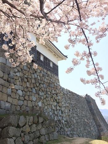 丸亀城お堀.jpg
